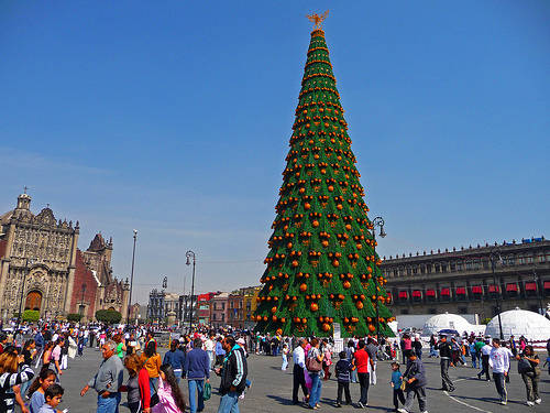 allaboutmannersfileswor - Biggest Christmas Tree In The World
